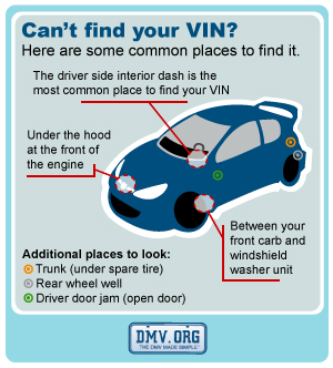 Locate the vehicle identification number vin for Motor vehicle record check