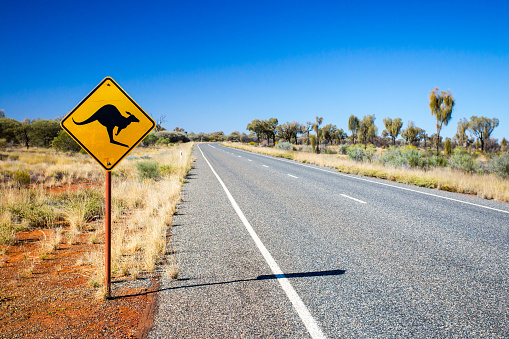 Self-driving cars can't quite figure out how to avoid kangaroos in Australia.